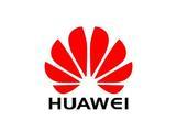 深圳市洲明科技股份有限公司主要客户